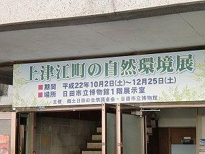 【大分県日田市】上津江町の自然環境展