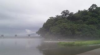 川沿いの散歩のススメ!